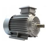 Silnik elektryczny 4,0kW 2900 rpm 400V 3 fazowy