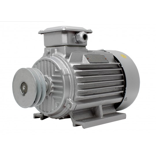 Silnik elektryczny 400V 3,0 kW 2800 rpm 3F + SZAJBA 100