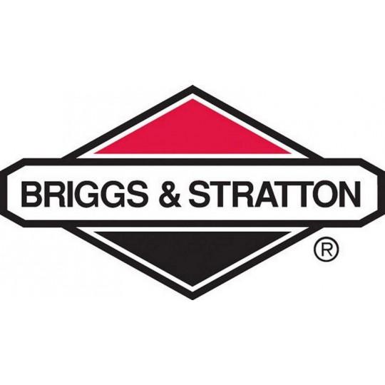 Silniki BRIGGS&STRATTON B&S